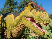 """Tyrannosaurus rex from """"Dinosaurs: Unextinct at the L.A. Zoo"""""""