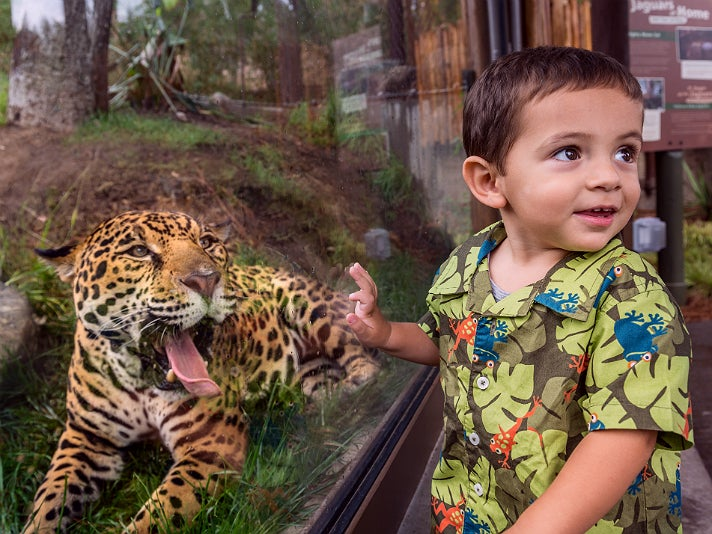 Jaguar and new friend at the L.A. Zoo