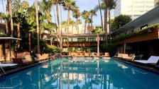 Tropicana Pool at Hollywood Roosevelt Hotel